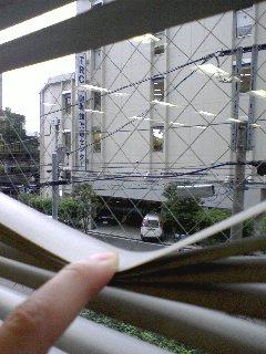 p20080528-1.jpg